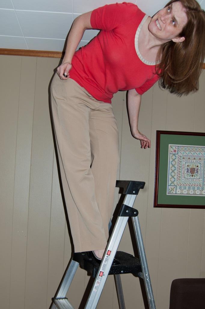 Short ladder, meet non-glass ceiling. Guess I'm not climbing any higher.